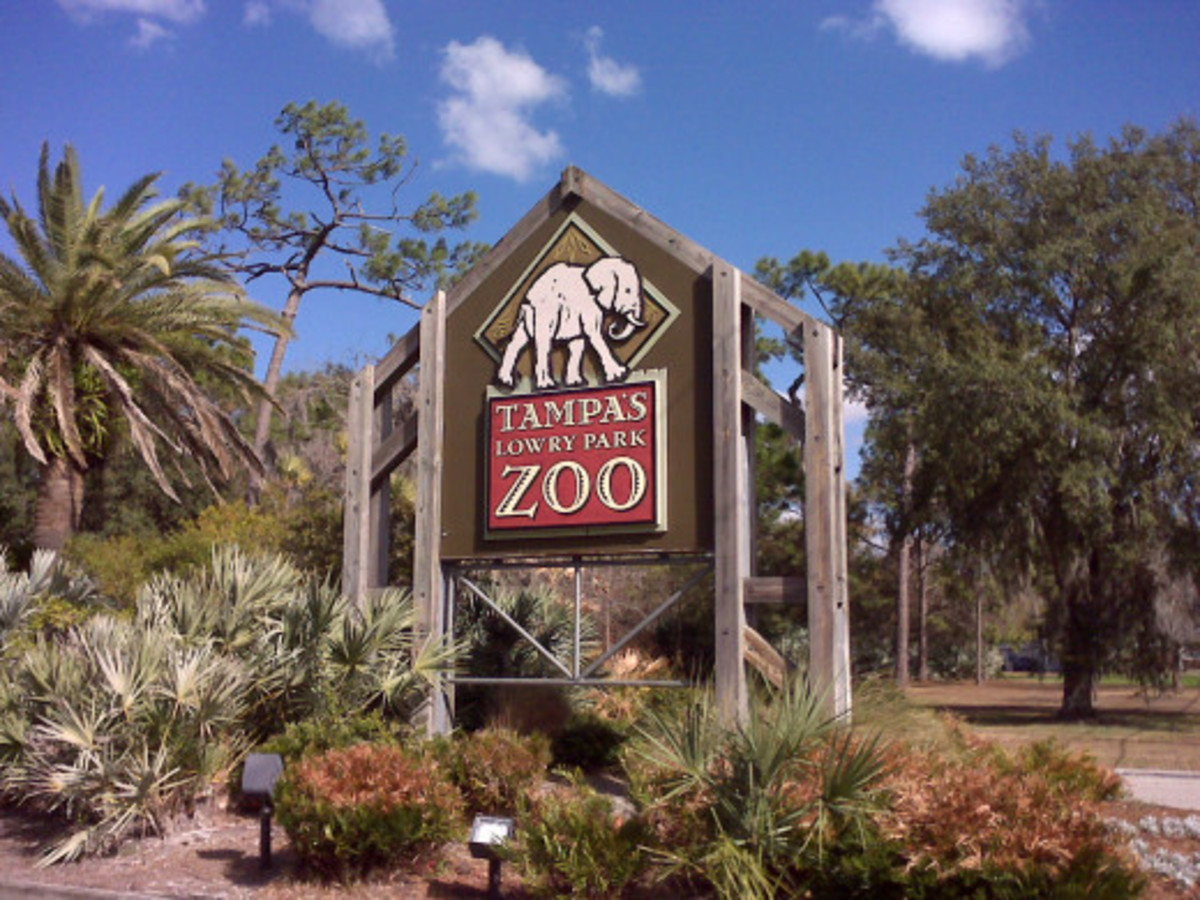 Sign at the main entrance to Tampa's Lowry Park Zoo. The facility was voted the #1 Family Friendly Zoo in the US by Parents Magazine in 2009. More than just a zoo, it is recognized by the state as a hub for wildlife conservation and biodiversity.