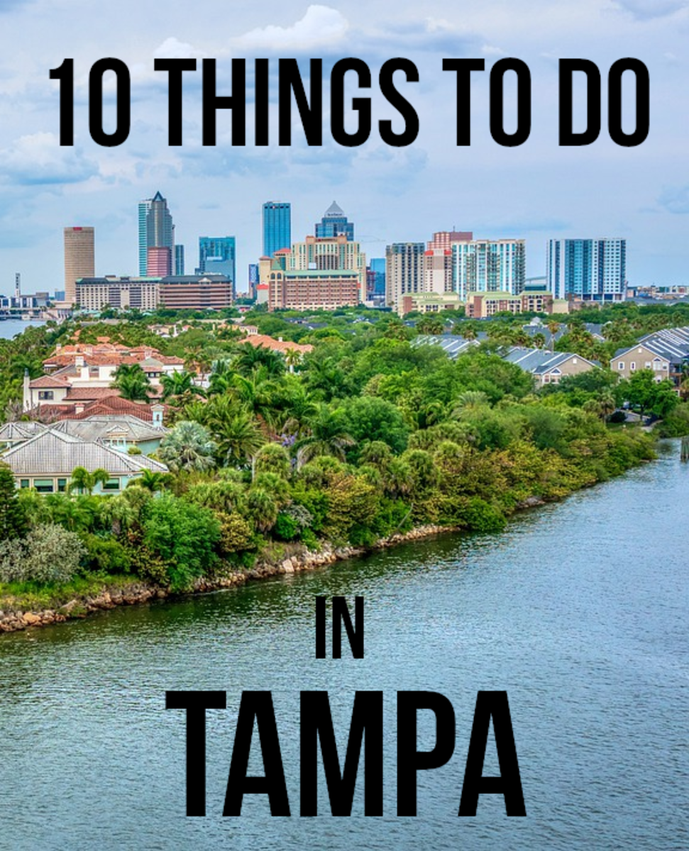10 Fun Things to Do in Tampa, Florida