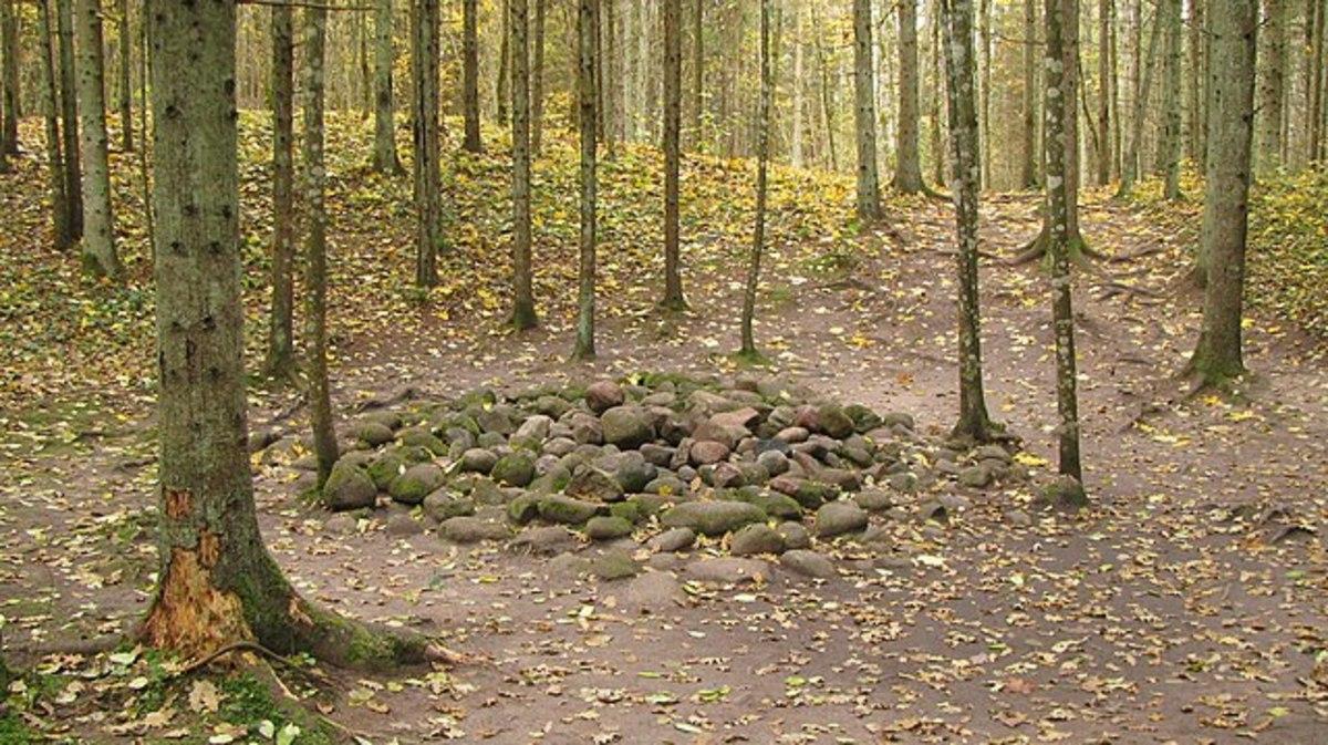 Stones in Pokaini Forest