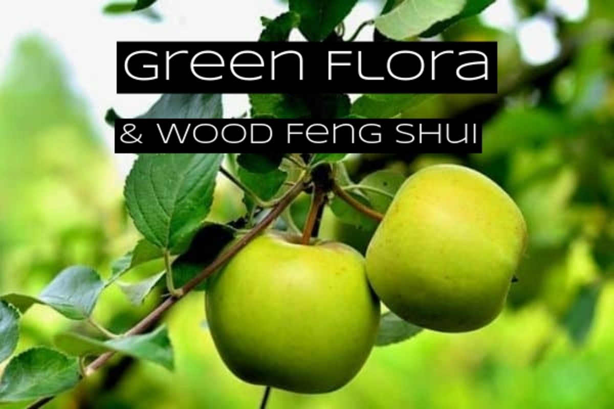 Green flora is essential in a feng shui garden section meant for the wood element. You can add green flowers, trees, shrubs, fruits, and vegetables.