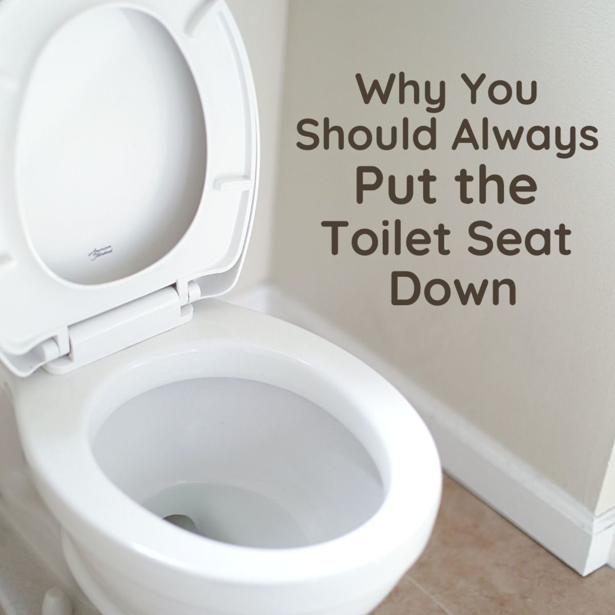 Toilets are gross and can even be dangerous—here's why you should shut the lid every time.