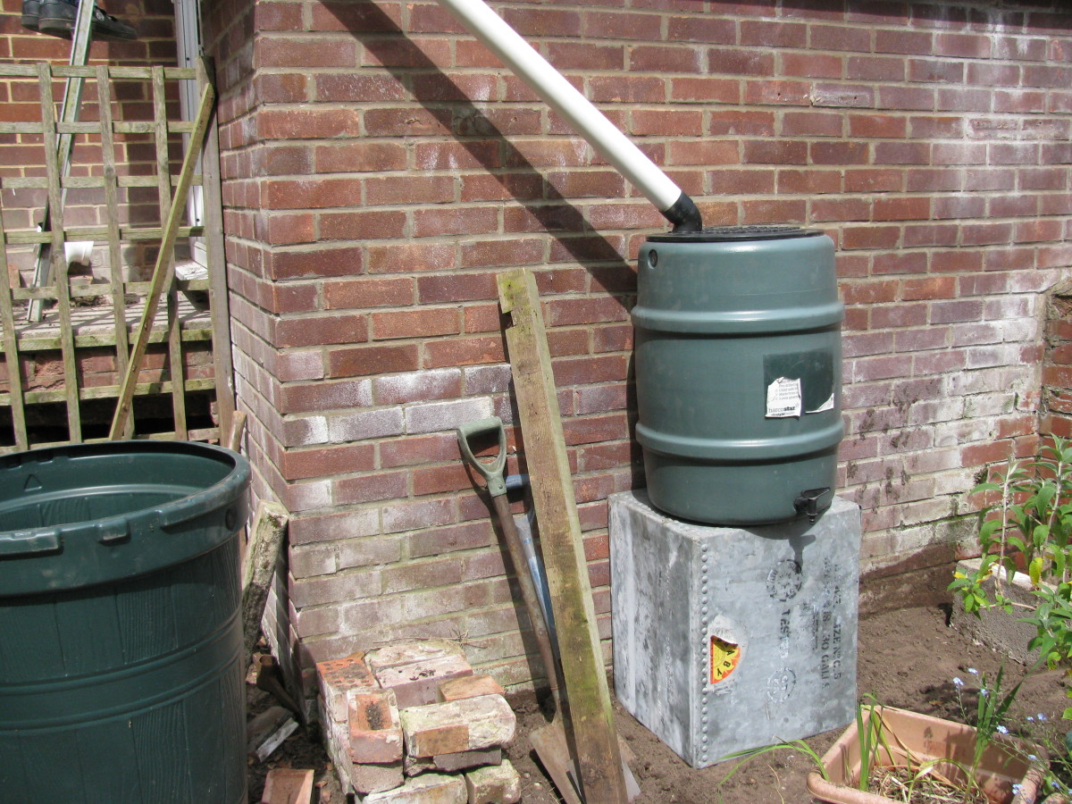 Collecting the Rainwater