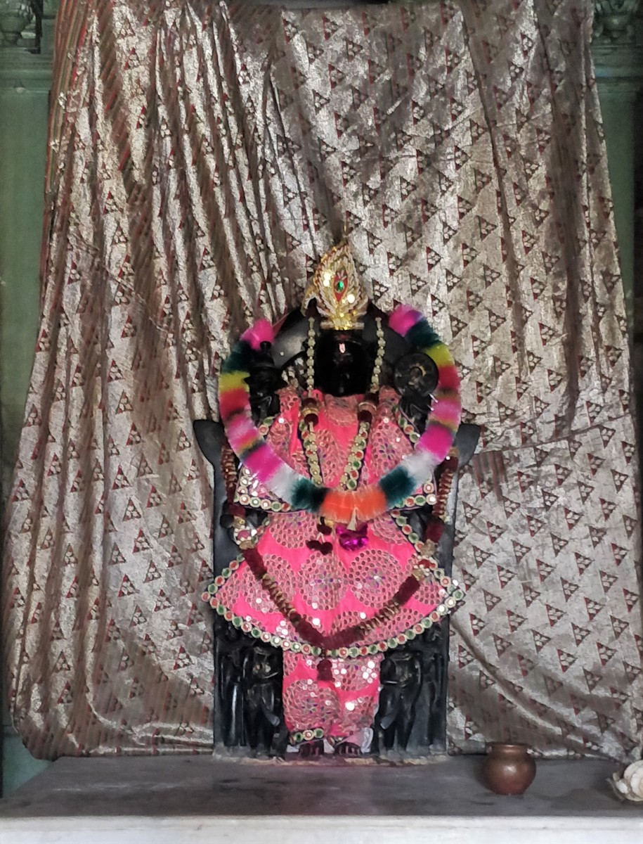 Idol of Adi Narayana-ji