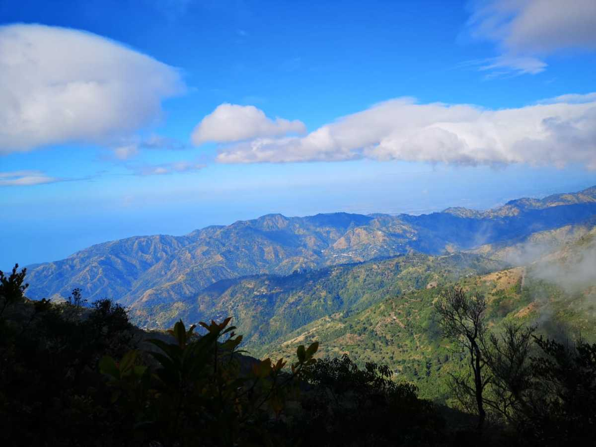 View from the top of Jamaica's Blue Mountains.