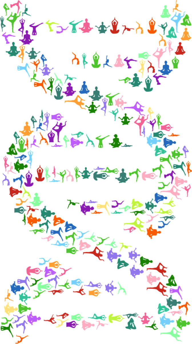 Can Yoga Change Our Genetic Makeup?