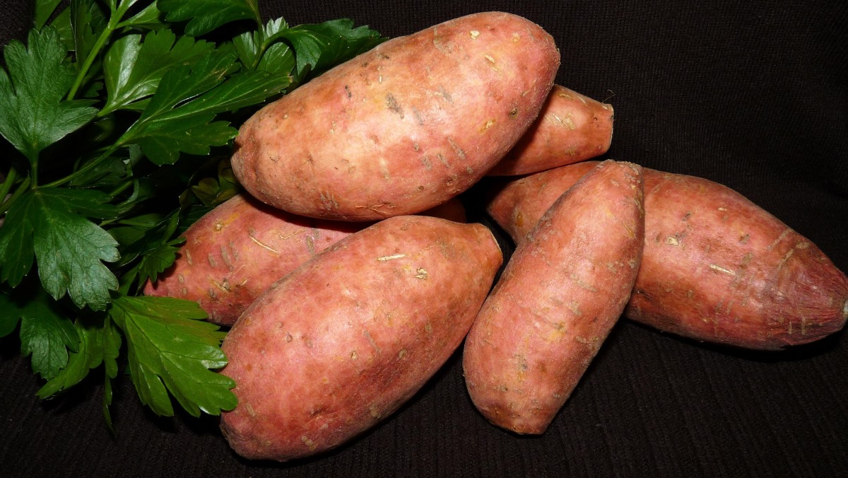 Sweet potatoes are easy to grow and so good for you!