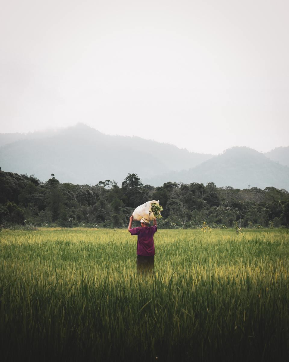 farmers-the-hard-working-people