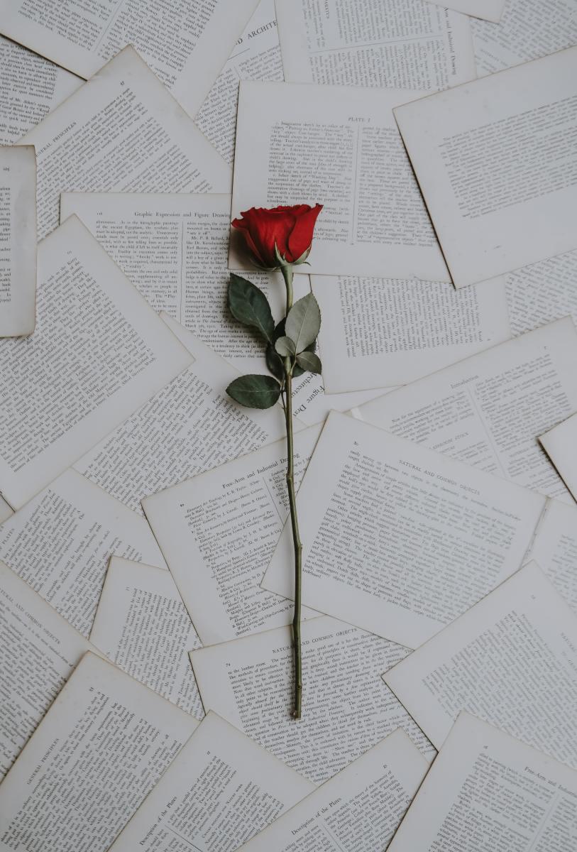 how-to-avoid-romance-fraud