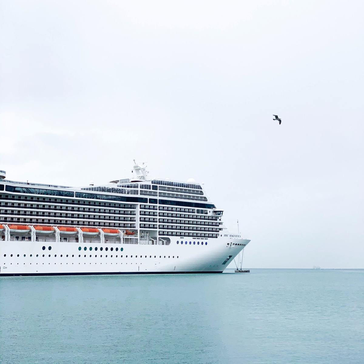 Cruises aren't all sunshine and mimosas. Here are what I consider the top 10 cons of cruising.