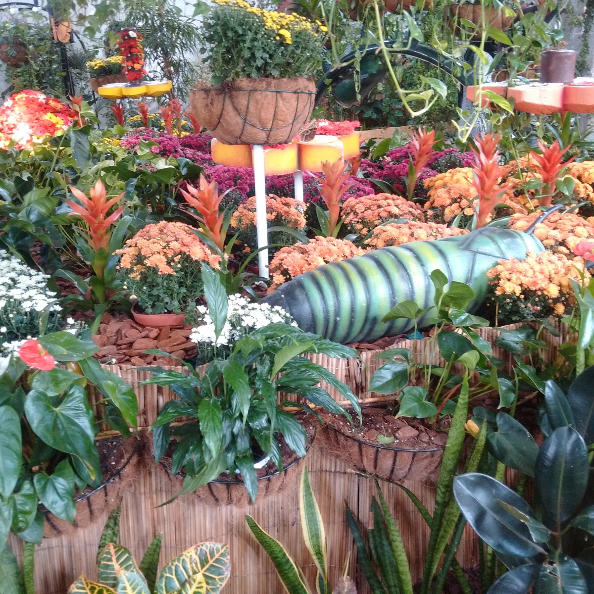 the-butterfly-park-in-dubaijust-like-a-dream