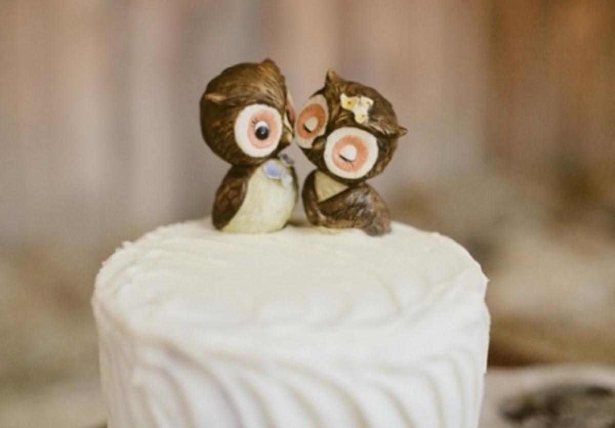 Owl always love you.
