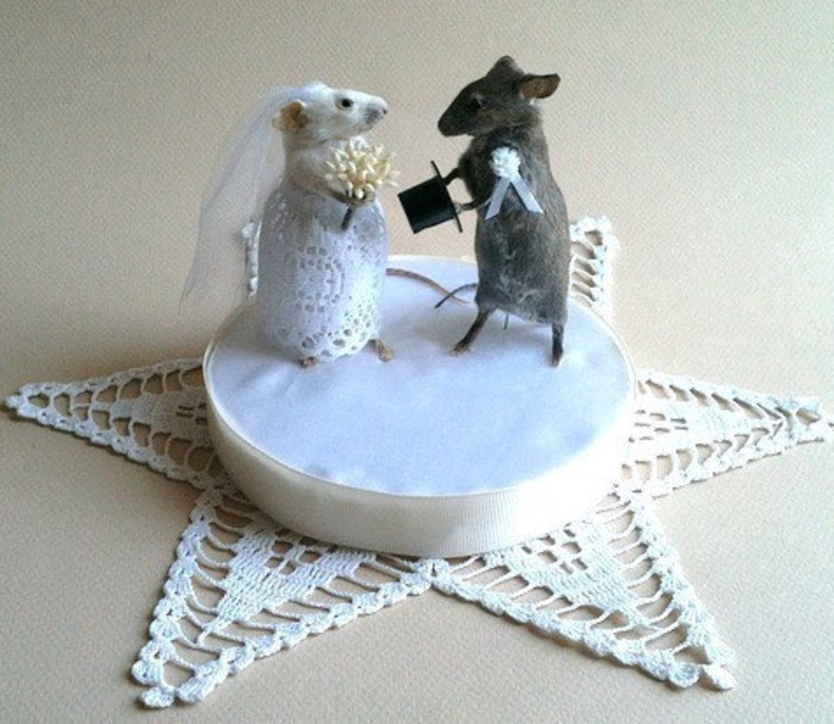 A gentlemouse and a ladymouse prepare to share their eternal vows.