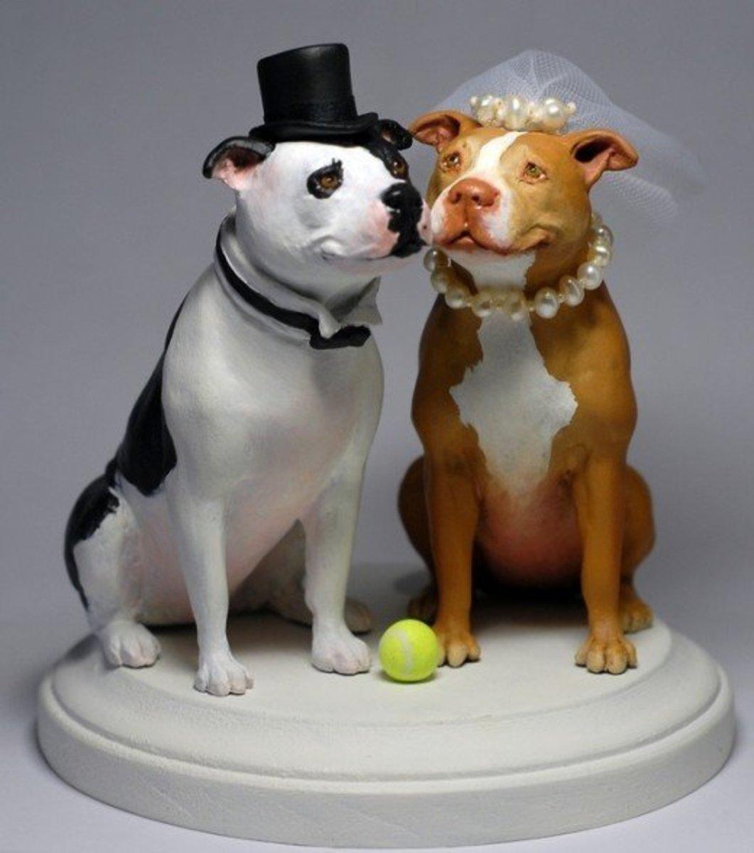 Sandy and Sheeba the pit bulls.