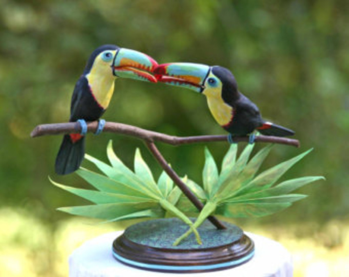Toucan play at this game!