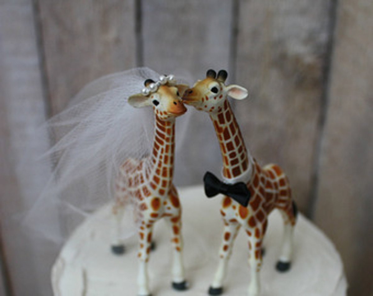 This giraffe bride is sporting pearls and a looong veil.