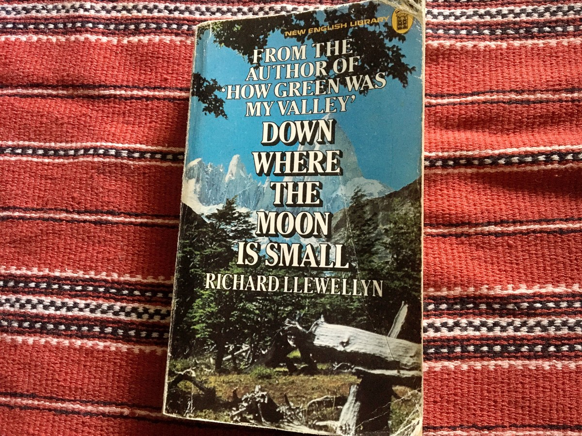 """Huw's story continues in three sequels, including """"Down Where the Moon is Small."""""""
