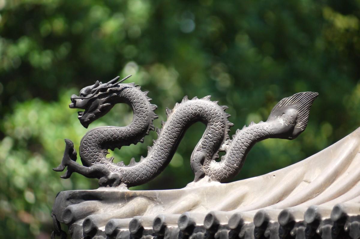 Asian Dragon