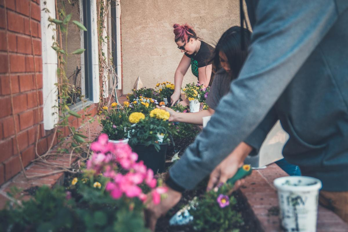 """""""Many hands make light work."""" Comparing notes with your fellow garden-lovers is priceless!"""