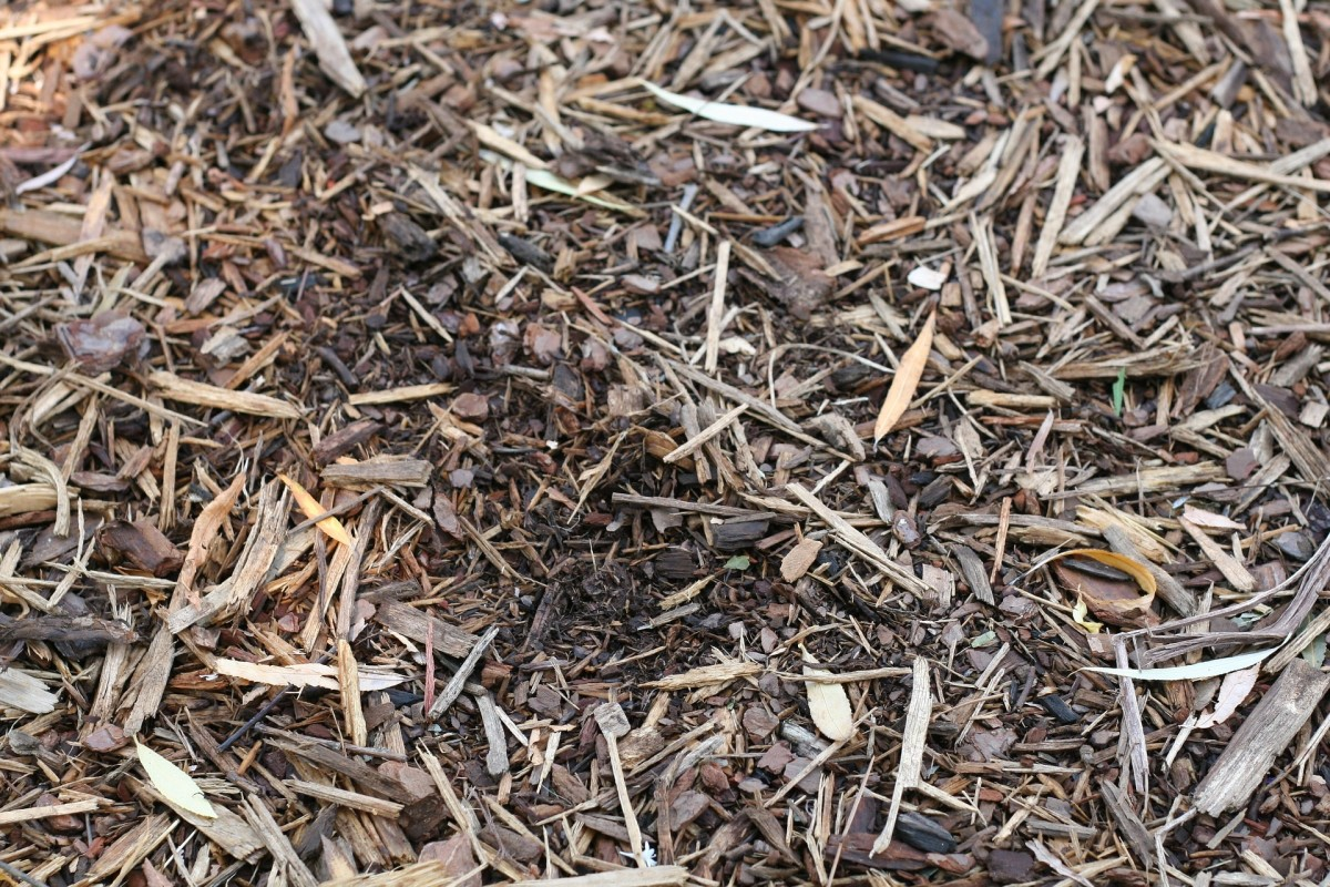 Gasoline-powered shredders and chippers can handle larger, harder pieces of wood.