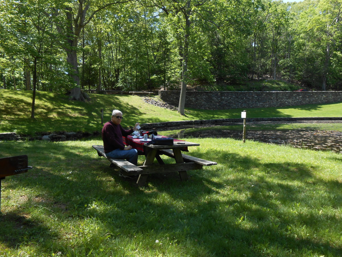 One of the picnic areas with a view of a goldfish pond.
