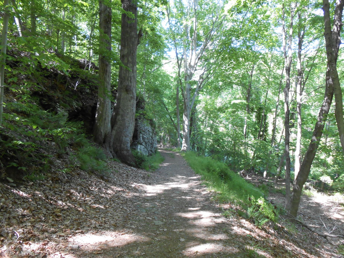 Gillette's Castle State Park in East Haddam, CT is a wonderful park for hikes with children.