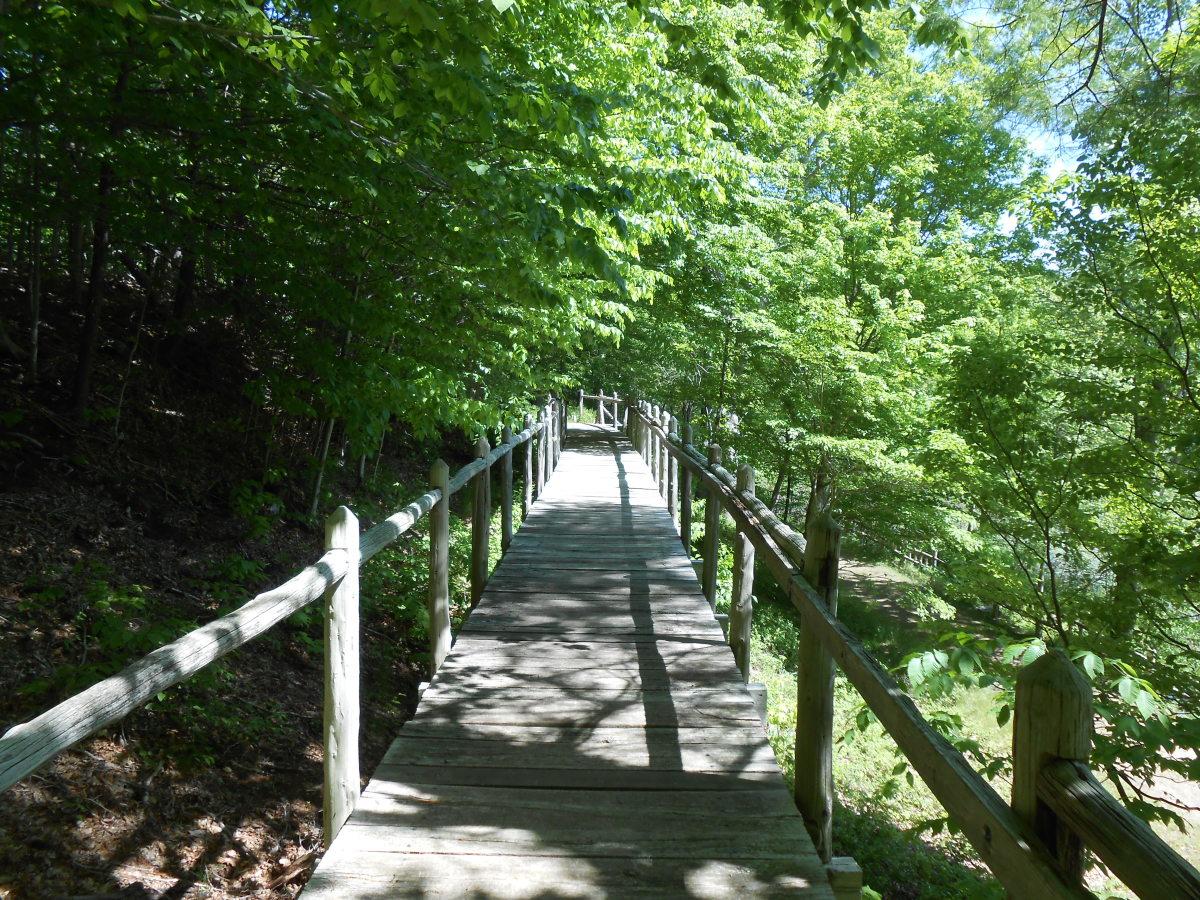 An old railroad bridge converted into a walking bridge to hike across.