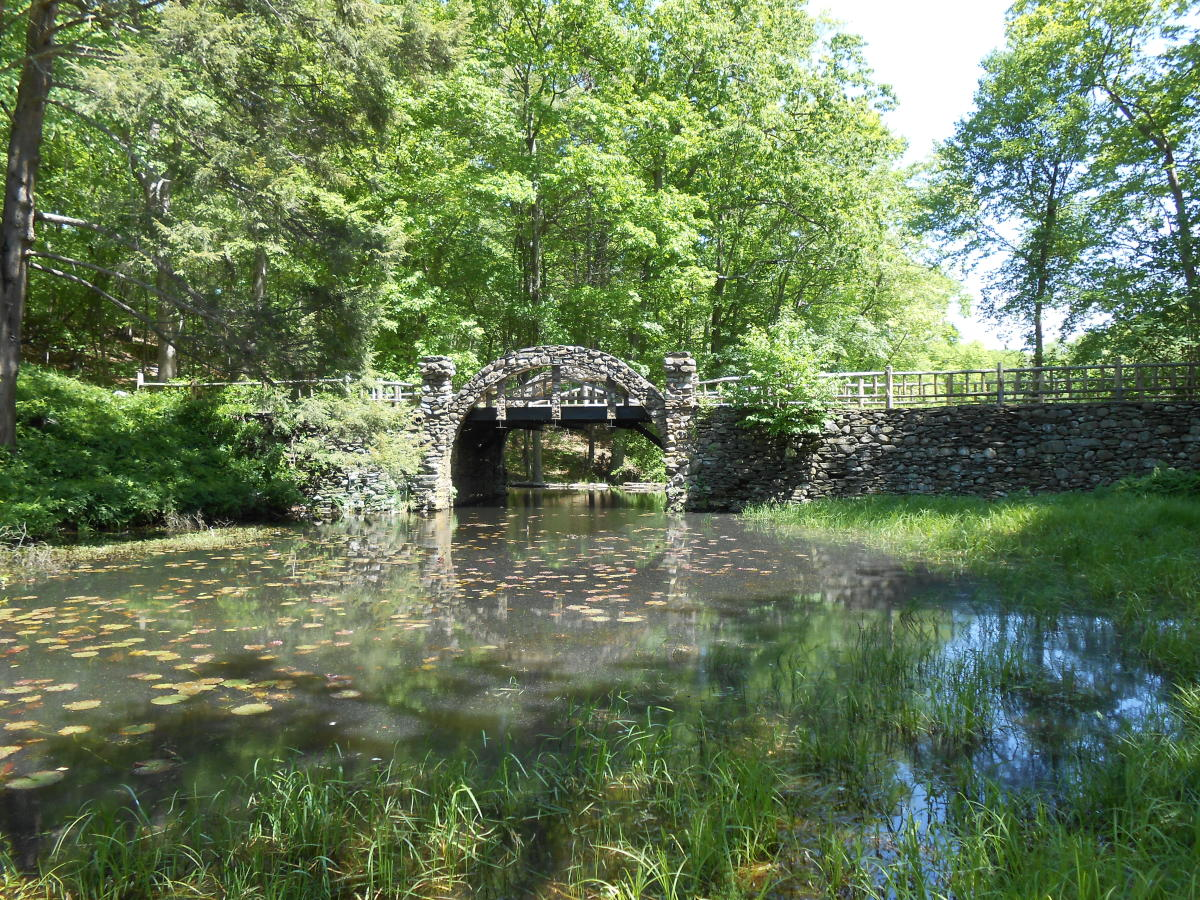Pond behind the picnic area with a picturesque stone bridge.