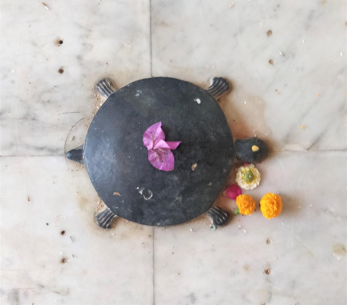 The Sacred Tortoise inside the main temple