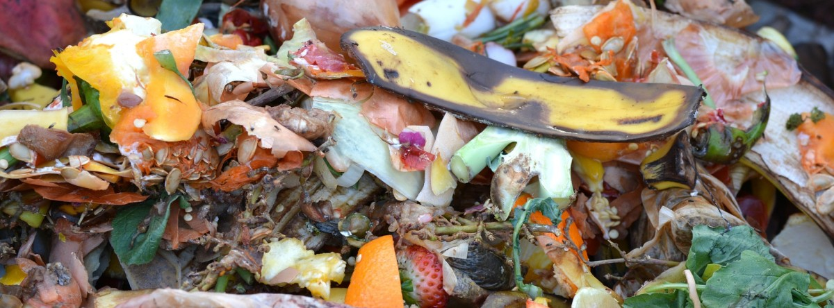Compost won't smell bad if you compost it correctly.