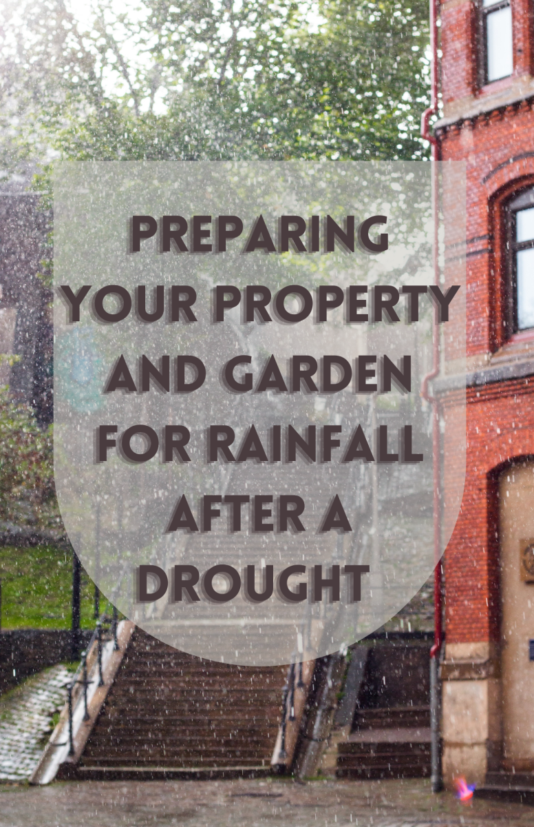 How to Prepare Your Property and Garden for Rainfall After a Drought