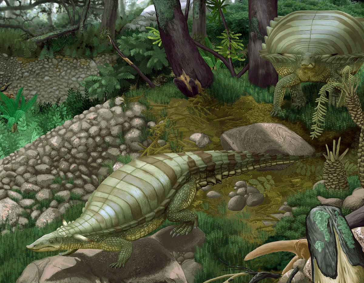 Life restoration of Typothorax coccinarum (Aetosaur)