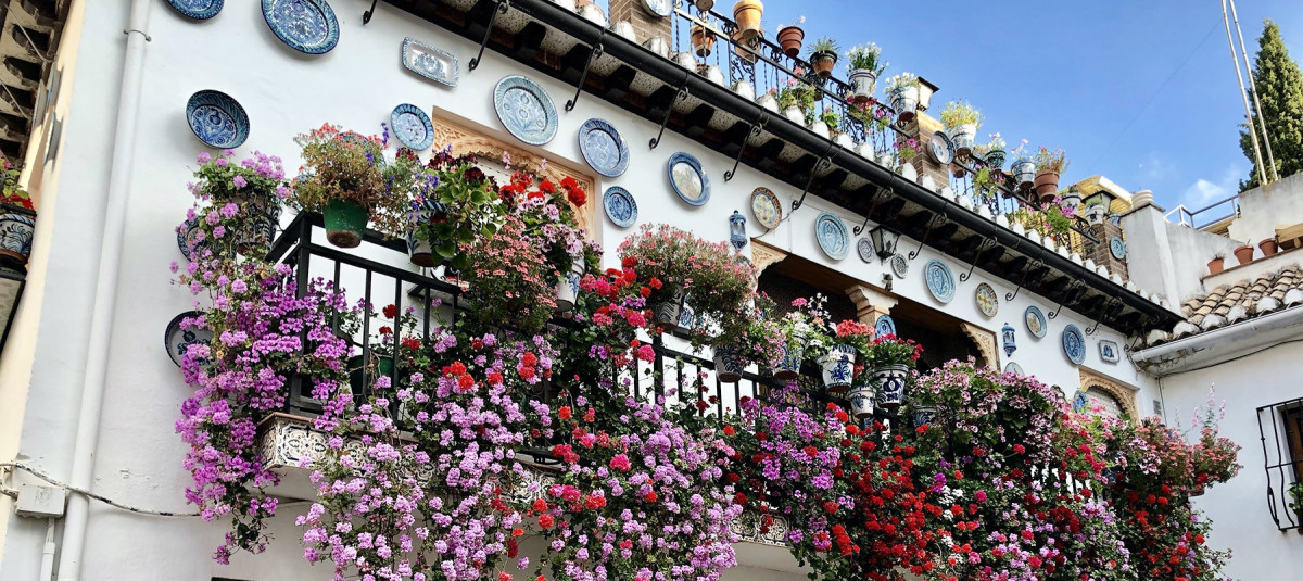 Balcony in Rumania with plants hanging down in waterfalls of color.