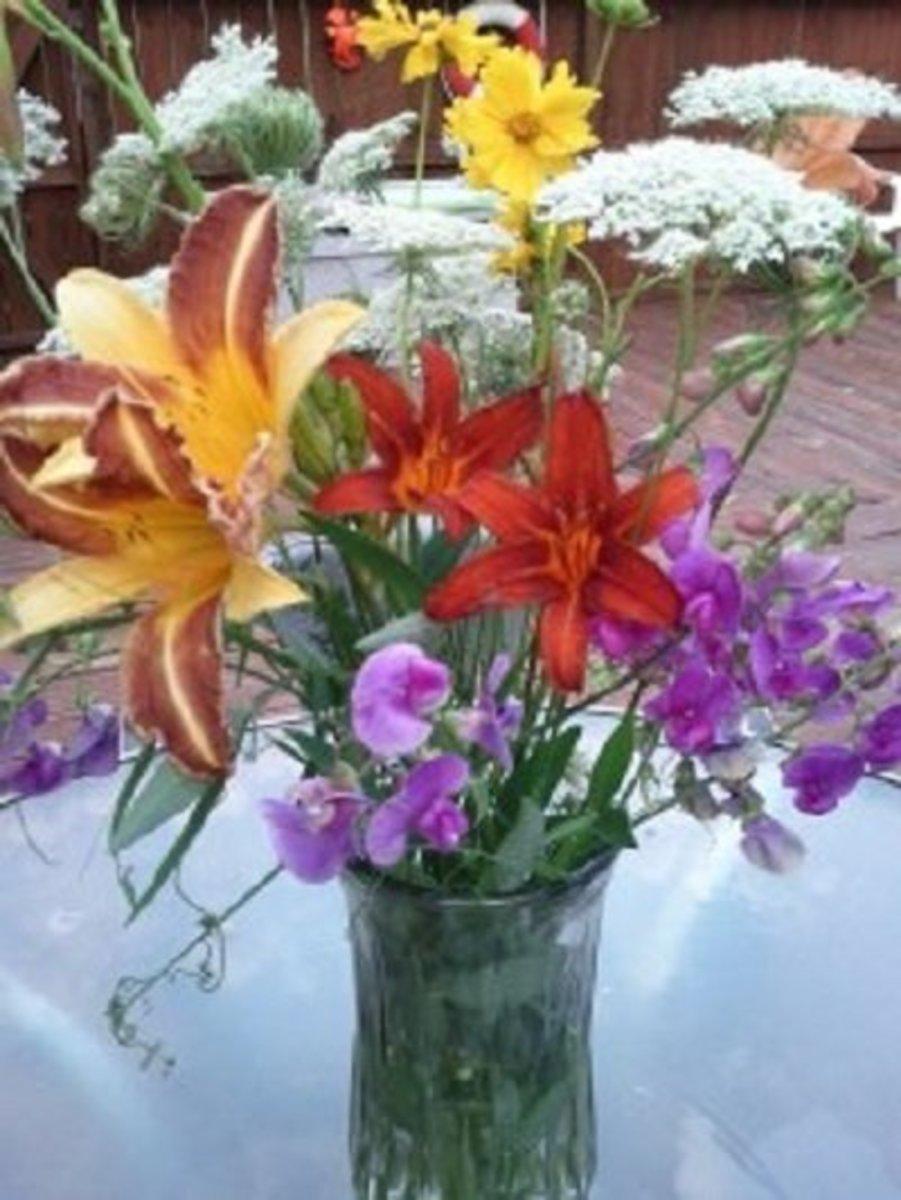 Daylilies in an informal arrangement