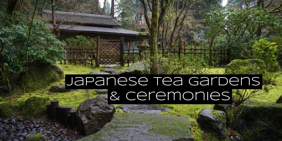 The tea garden prepares the guest mentally for the tea ceremony.