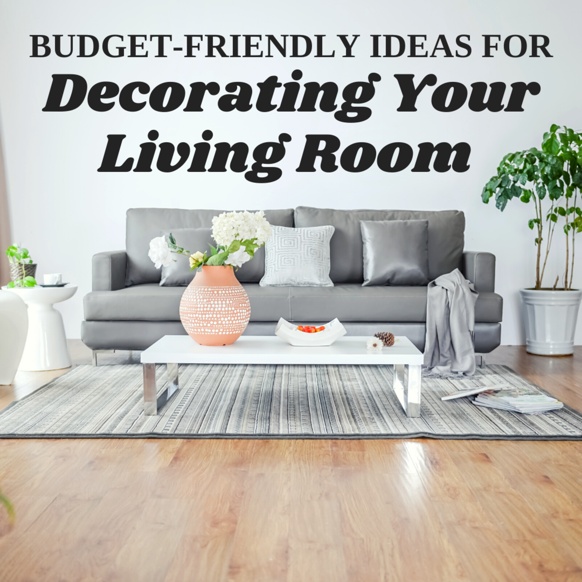 20+ Living Room Decorating Ideas on a Budget