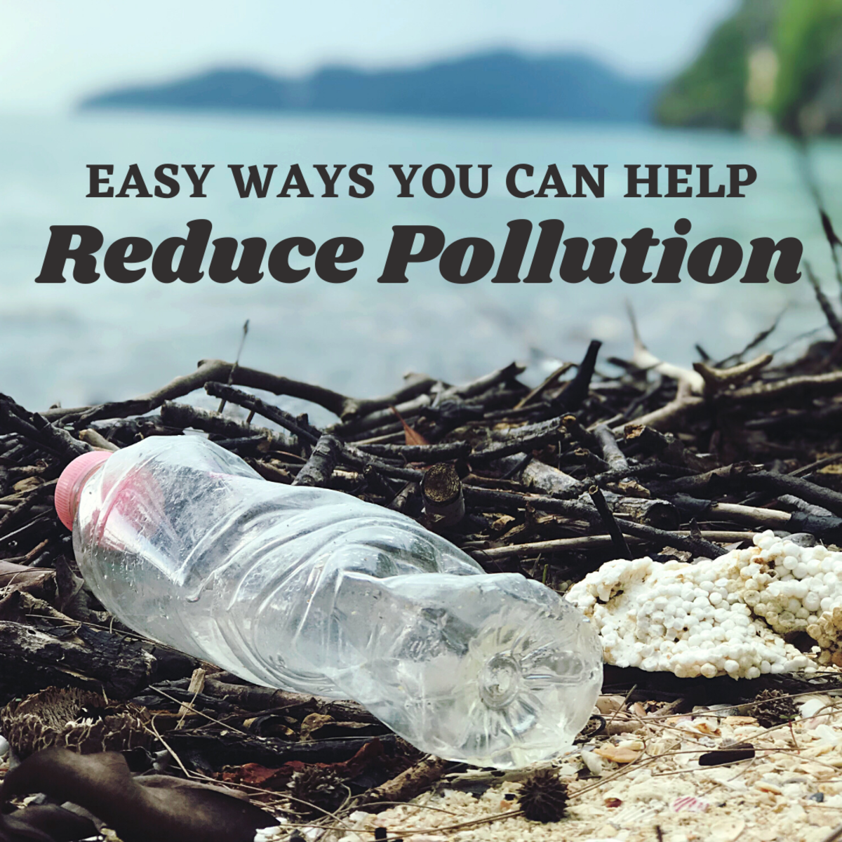 Five ways you can help reduce pollution