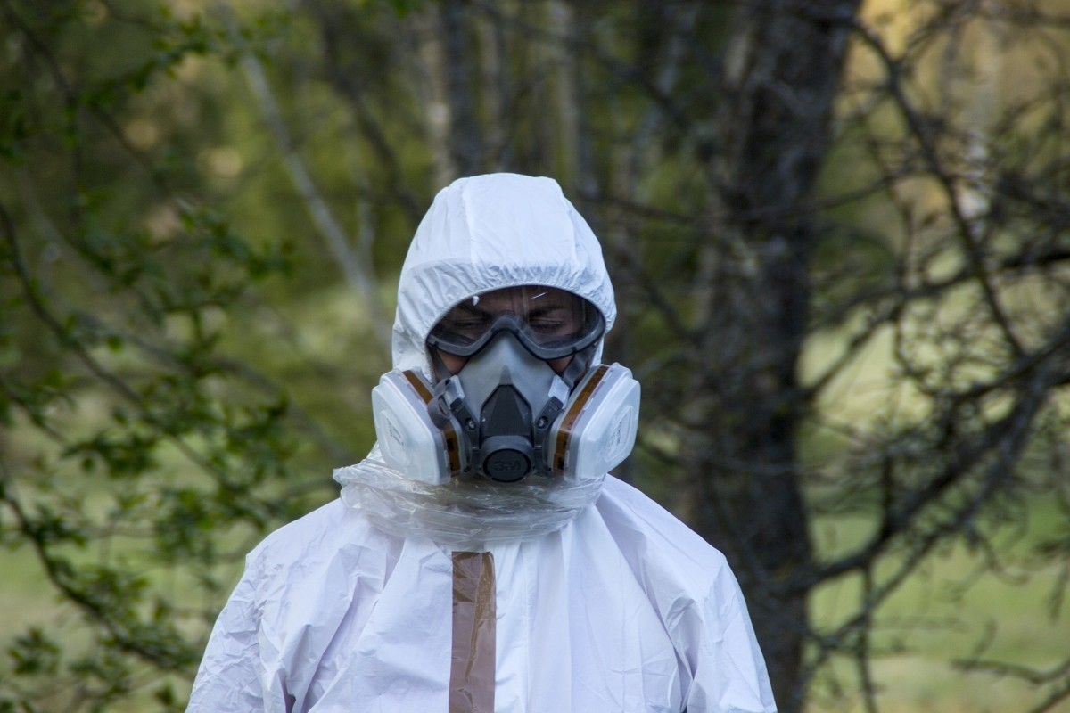 Asbestos must be identified and removed by professionals wearing safety gear.