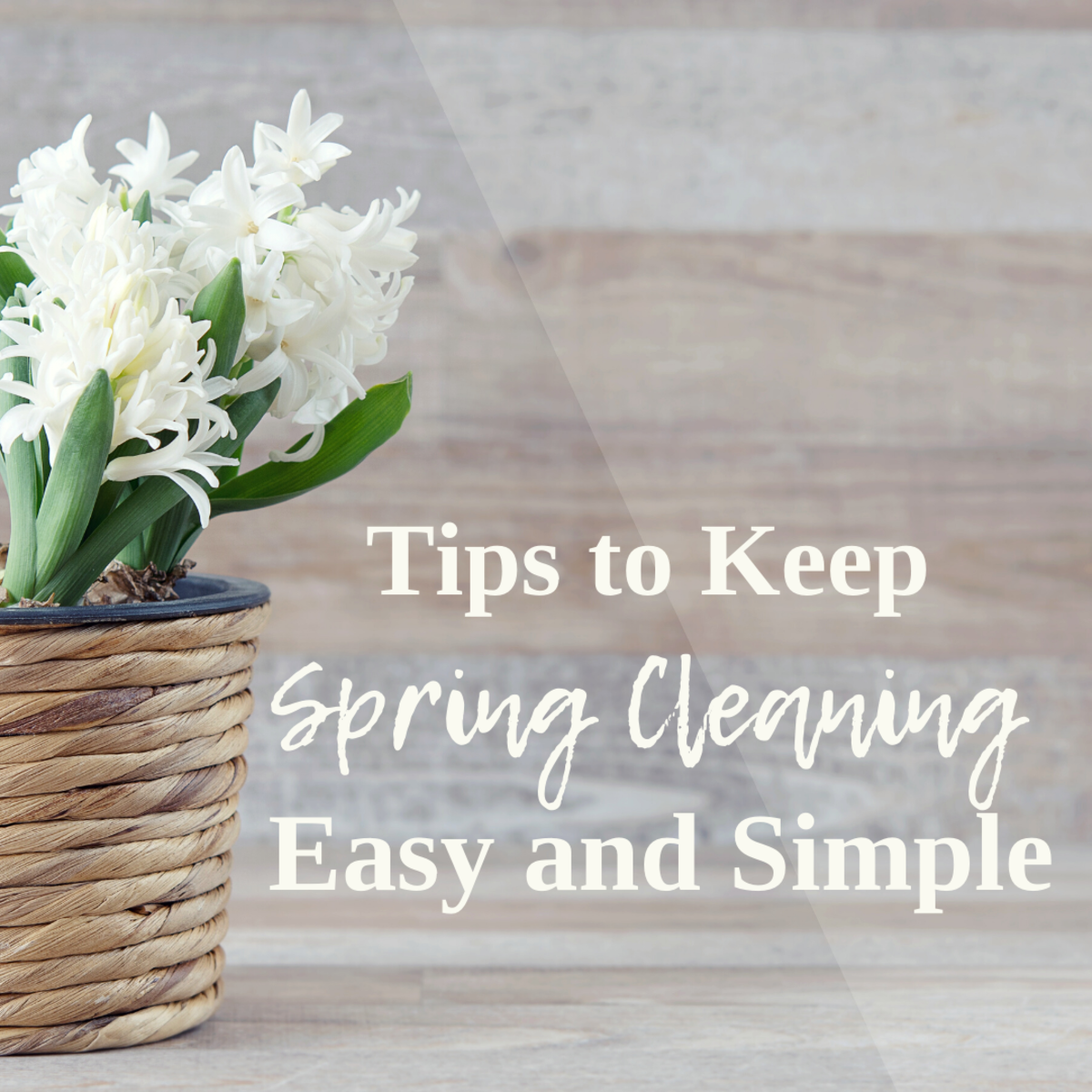 Spring Cleaning 101: Tips, Tricks, and Room-by-Room Guide