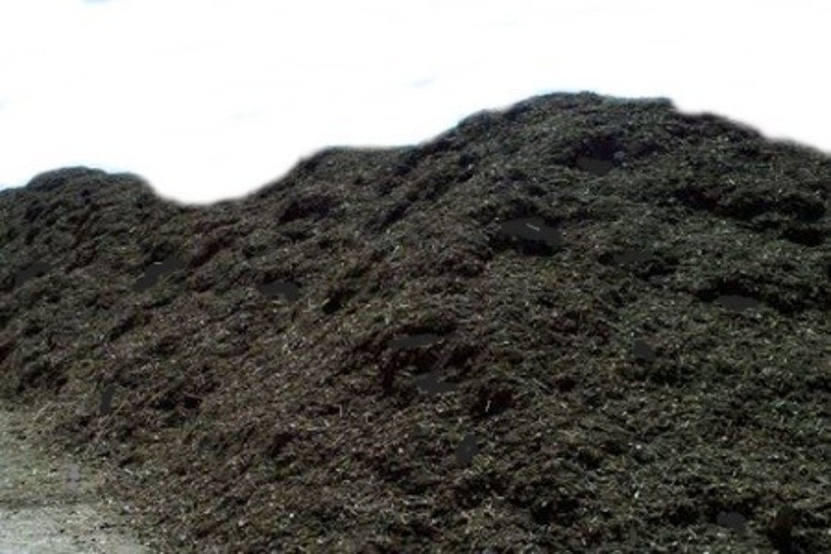 Heap of Potting Soil