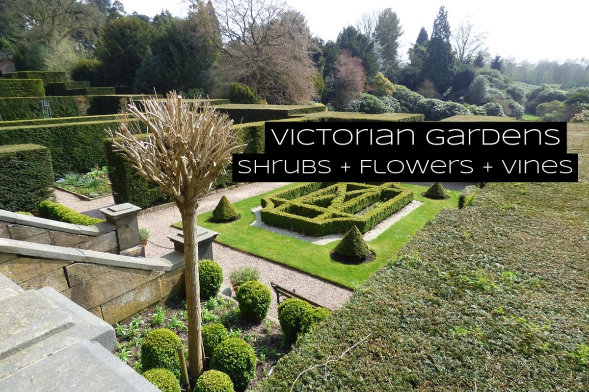 Victorian gardens are about showmanship. They're less about connecting with nature and more about what designers can do to impress people.