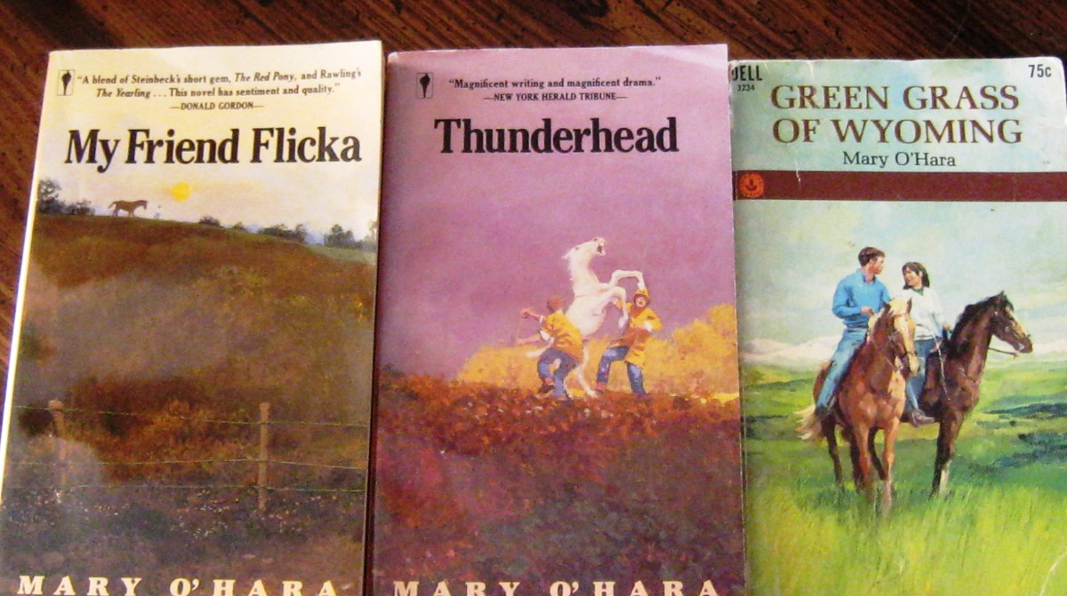 my Friend Flicka Book Series my Friend Flicka