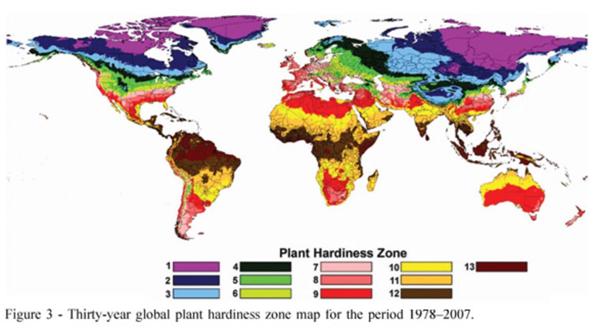 World Zone Map