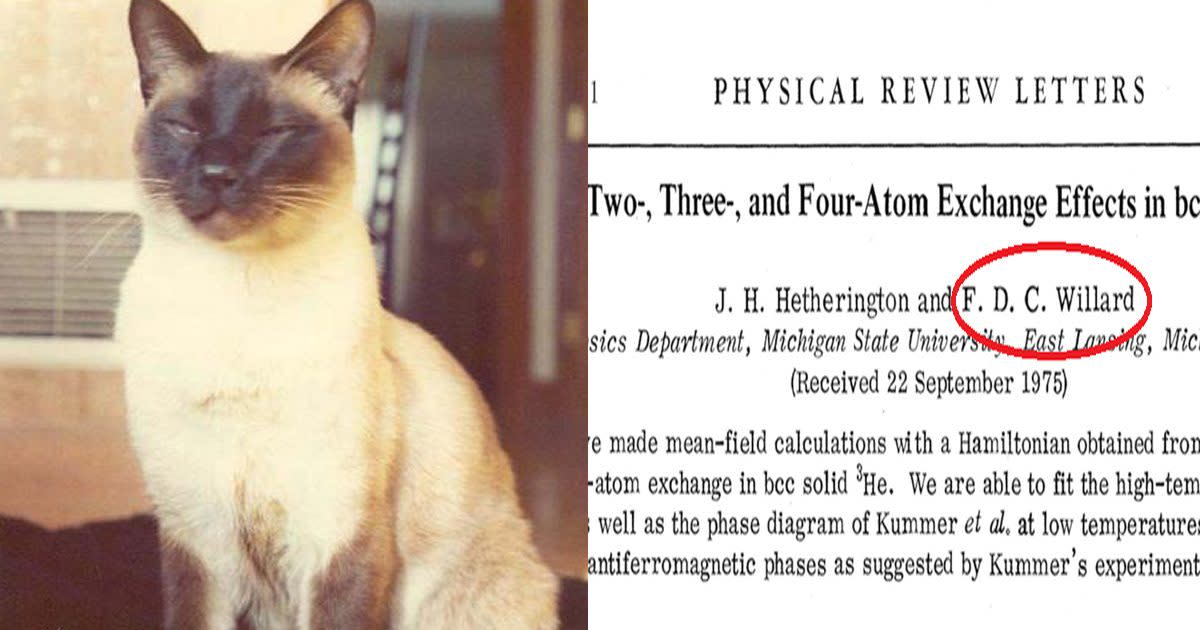 The Story of F.D.C. Willard, the Cat Who Co-authored a Science Paper