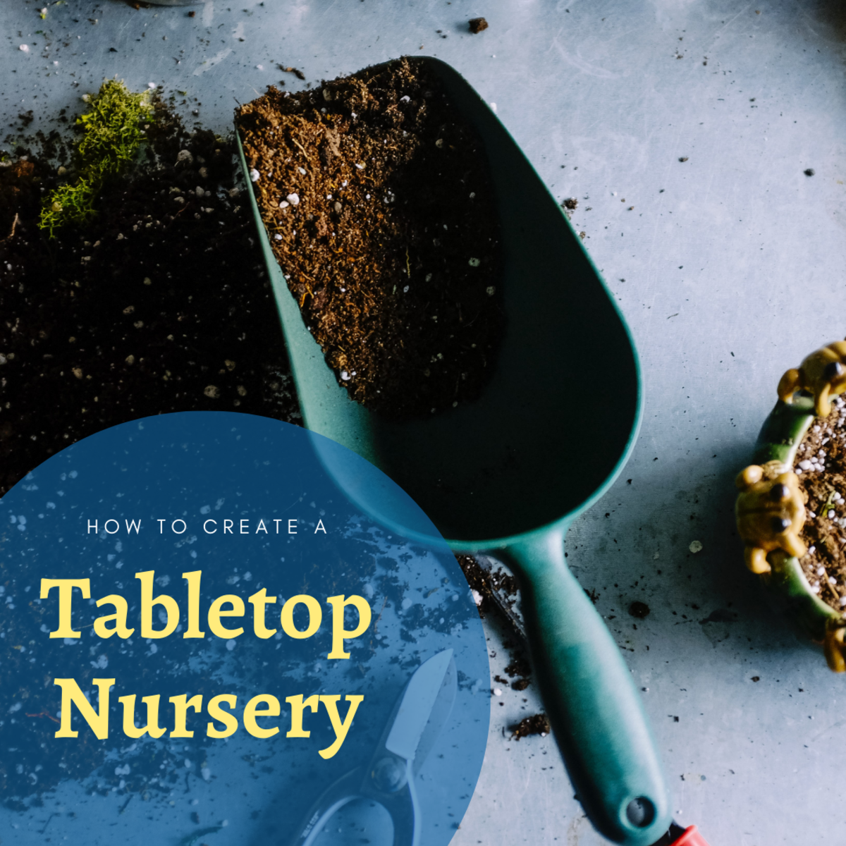 How to Make Money With a Tabletop Nursery
