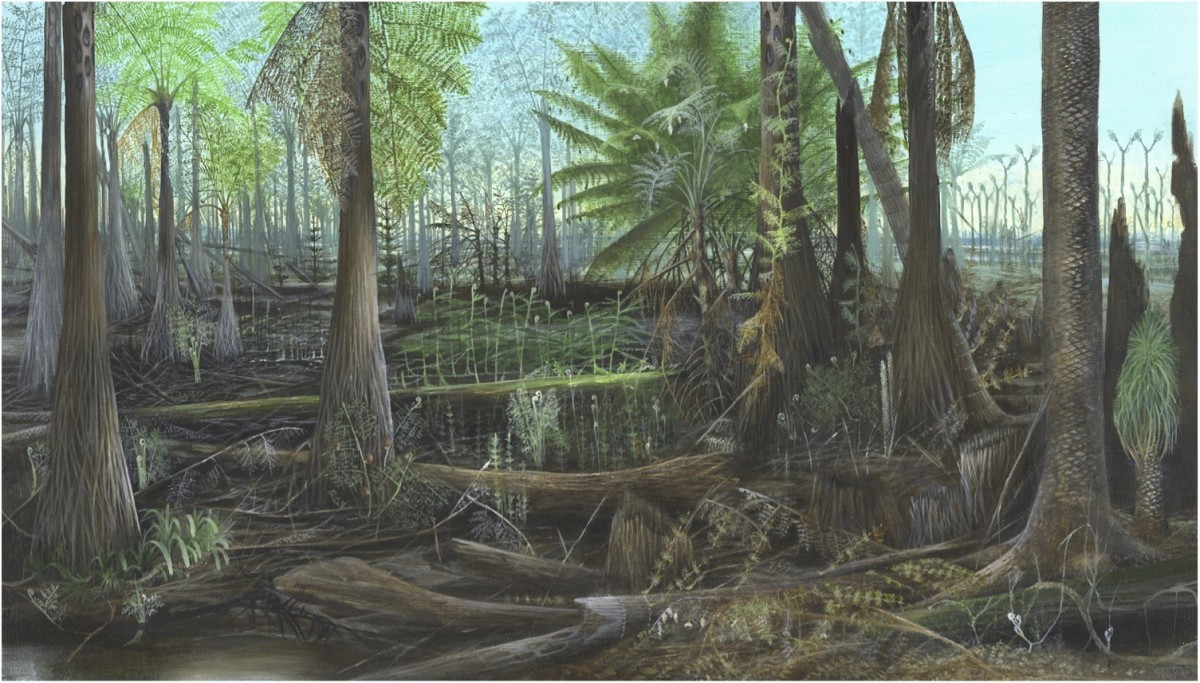 A depiction of the Earth's environment during the Carboniferous Period
