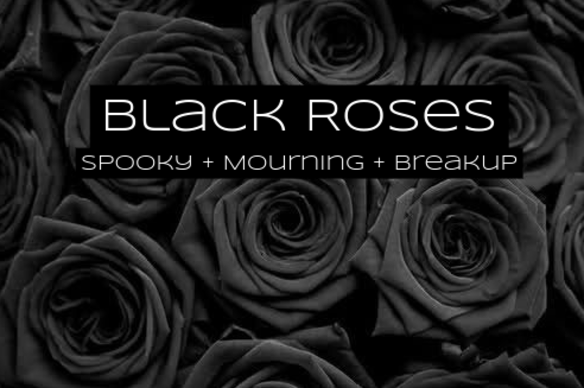 Black roses are for mourning. They're for Halloween. They're for breaking up.