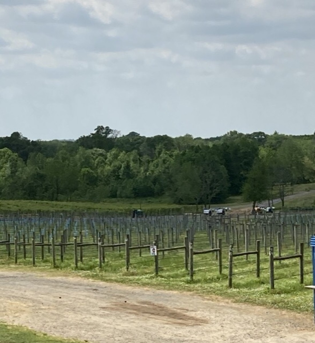 Scenes from Laurita Winery