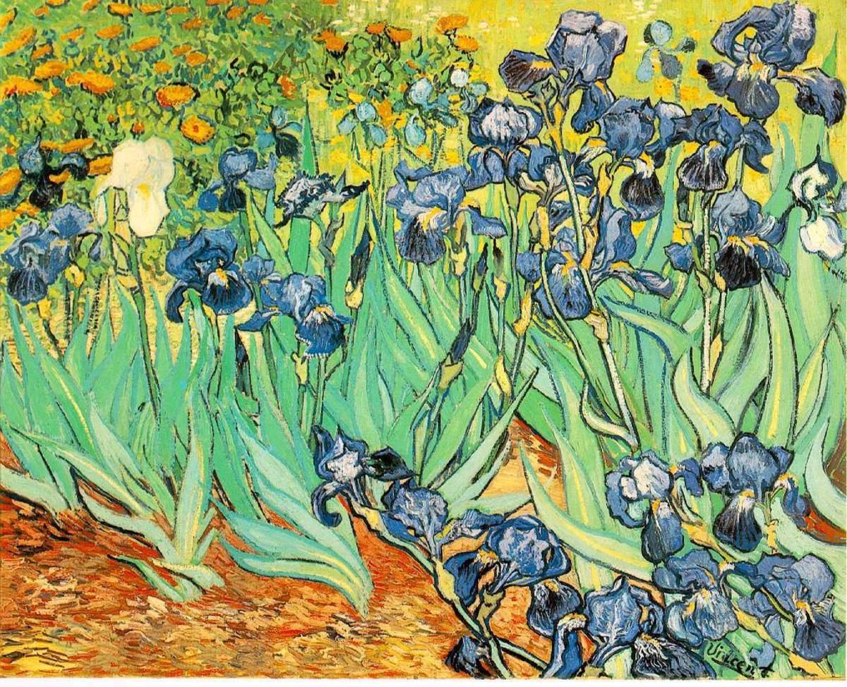 """""""Irises"""" - May 1889"""