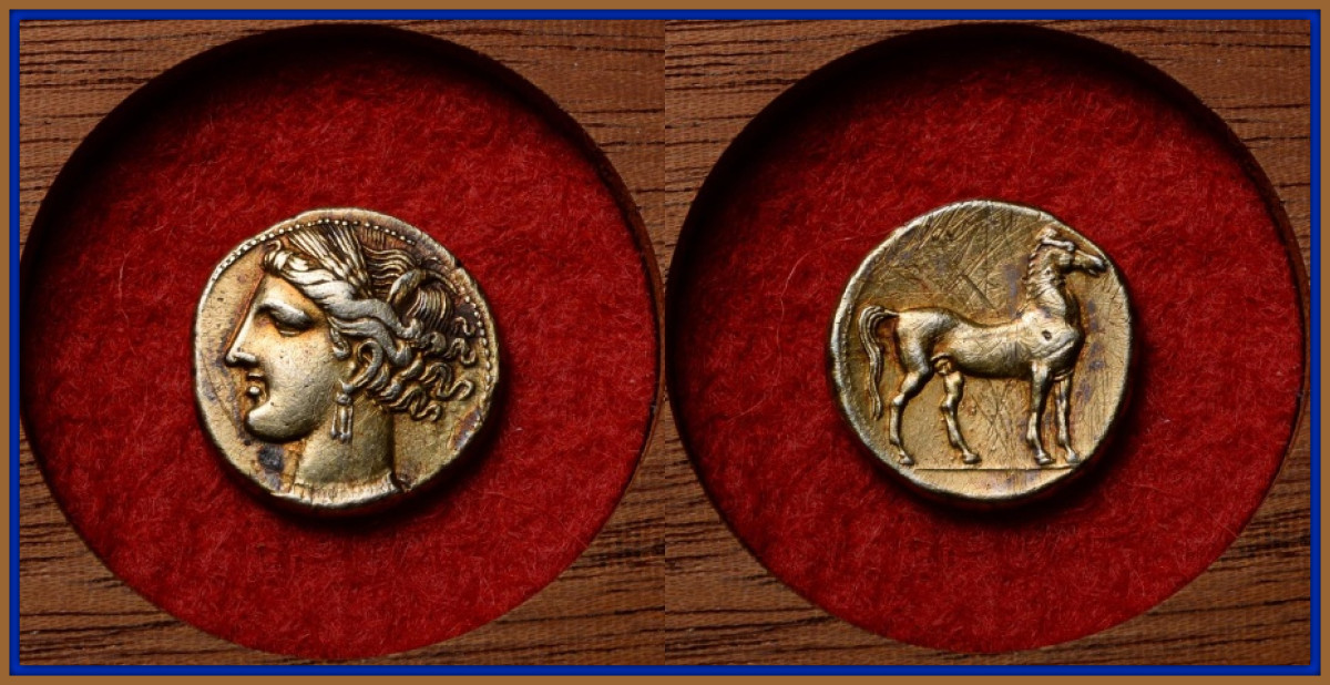 The obverse with the portrait of the chief goddess of Carthage, Tanit. She is shown facing left, wearing triple drop earring and necklace, her hair tied up with a wreath of grain. The reverse with horse standing facing right.