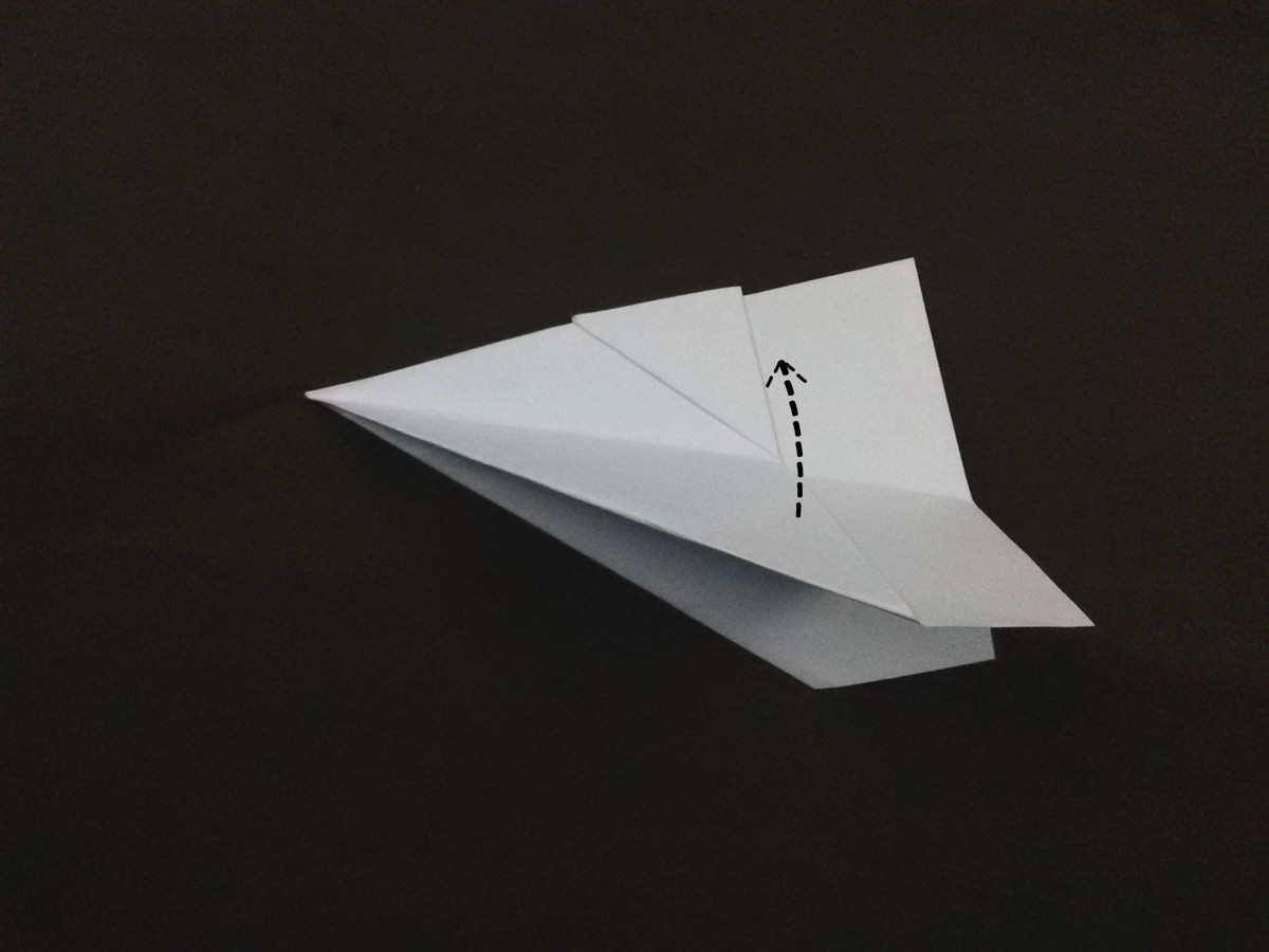 Do this folding to both wings.